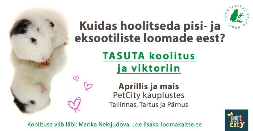 Pressiteade: Eesti Loomakaitse Selts kutsub osalema pisi- ja eksootiliste loomade koolitusel