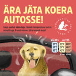 Pressiteade: Ära jäta lemmiklooma suve kuumaga autosse!