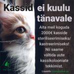 Toeta kasside steriliseerimist/kastreerimist!